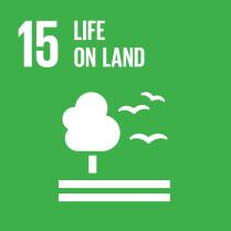E_SDG goals_icons-individual-rgb-15